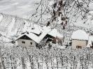Winterimpessionen 2021_2