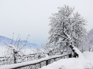Winterimpessionen 2021_4