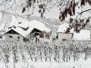 Winterimpessionen 2021_5